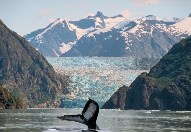 Alaska Inside Passage 2